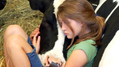 girl_and_cow_sleeping