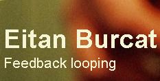 Eitan Burcat