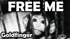goldfinger-free-me